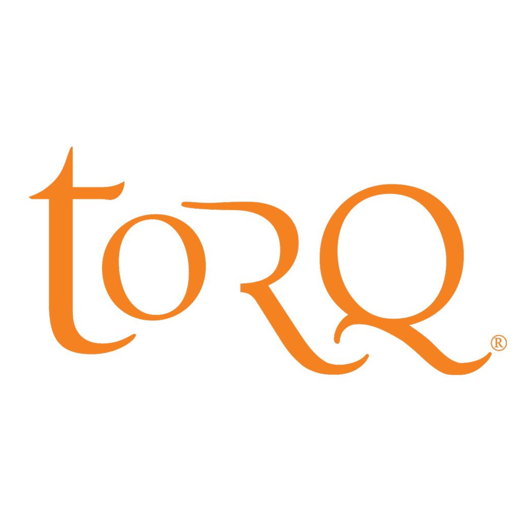 Image result for torq logo