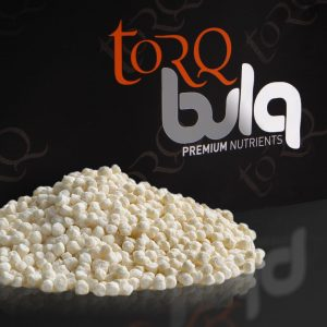TORQ Whey Protein Crisps
