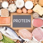 Protein, Performance & 20-25g Protein Recipes